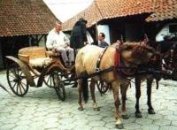 Gałkowo - Knajpa u Targowiczan